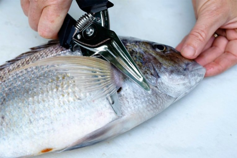 how to clean a fish